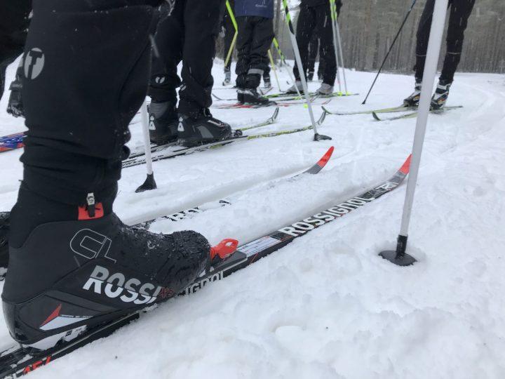 Bild på skidskor o skidor